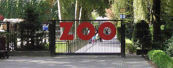 http://zoo-krakow.pl/wp-content/themes/zoo/images/zoo-banner.jpg