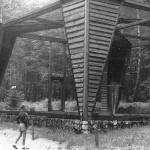 klata ptaków drapieżnych, lata 60-te