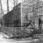 klaty przeznaczone dla rosomaków i niedźwiedzi, lata 60-te