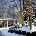 Zima w zoo